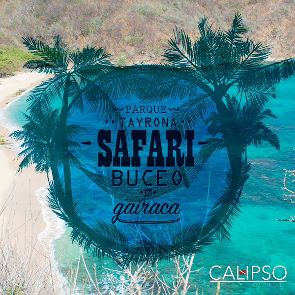 safari-de-buceo